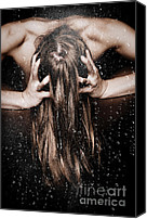 Stroking Canvas Prints - Hair Canvas Print by JT PhotoDesign