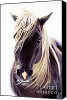Animal Mixed Media Canvas Prints - Heart Of A Horse Canvas Print by Zeana Romanovna