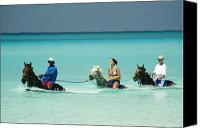 Cay Canvas Prints - Horse Riders in the Surf Canvas Print by David Smith
