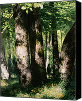 Forest Floor Painting Canvas Prints - In the Forest of Fontainebleau Canvas Print by Pierre Auguste Renoir