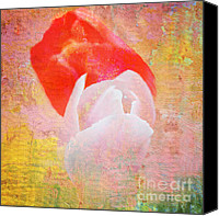 Jenny Rainbow Canvas Prints - Its a Love Magic Canvas Print by Jenny Rainbow