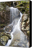 Snow Special Promotions - Kinsman Notch - Woodstock New Hampshire USA  Canvas Print by Erin Paul Donovan