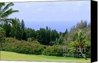 Mary Deal Canvas Prints - Kukuiolono Golf Course - Hole 9 Canvas Print by Mary Deal