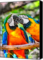 Parrots Canvas Prints - Love Bites - Parrots in Silver Springs Canvas Print by Christine Till