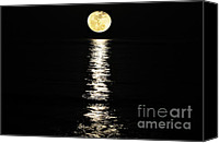 Beach Photograph Canvas Prints - Lunar Lane 01 Canvas Print by Al Powell Photography USA