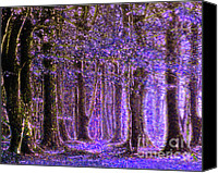 Country Canvas Prints - Magic Forest - Impressionism Canvas Print by Zeana Romanovna