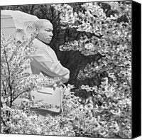 King Digital Art Canvas Prints - Martin Luther King Memorial through the Blossoms Canvas Print by Mike McGlothlen