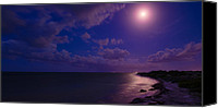 Grace Photo Canvas Prints - Moonlight Sonata Canvas Print by Chad Dutson
