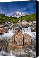 Volcano Canvas Prints - Mount Rainier Glacial Flow Canvas Print by Adam Romanowicz