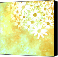 Ann Powell Canvas Prints - nature - flowers- White Daisies -floral art Canvas Print by Ann Powell
