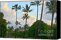 Mary Deal Canvas Prints - Opaekaa Park in the Morning Canvas Print by Mary Deal