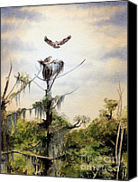 State Park Painting Canvas Prints - Ospreys Nesting Wakulla River Canvas Print by Bill Holkham