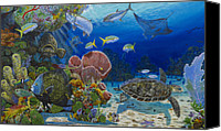 Grouper  Canvas Prints - Paradise Canvas Print by Carey Chen