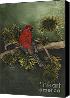 Nan Wright Canvas Prints - Pine Grossbeak Canvas Print by Nan Wright