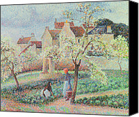 Featured Canvas Prints - Plum Trees in Flower Canvas Print by Camille Pissarro