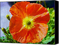 Poppies Canvas Prints - Poppy series - Opened to the Sun Canvas Print by Moon Stumpp