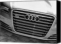 Tuxedo Canvas Prints - Quattro Canvas Print by William Dey