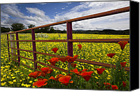 Fences Canvas Prints - Red Gate Canvas Print by Debra and Dave Vanderlaan