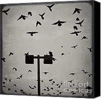 Creepy Canvas Prints - Revenge of the Birds Canvas Print by Trish Mistric