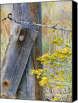 Barbed Wire Fences Photo Canvas Prints - Rustic Fence and Wild Flowers Canvas Print by Jennie Marie Schell