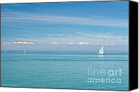 Boat Special Promotions - Sailboat on Blue Canvas Print by Barbara McMahon