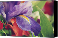 Purple Flowers Canvas Prints - Shades of You and Me Canvas Print by Laurie Search