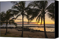 Water Special Promotions - Sharks Cove Sunset 4 - Oahu Hawaii Canvas Print by Brian Harig