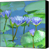 Water Lily Canvas Prints - Silken Lilies Canvas Print by Holly Kempe