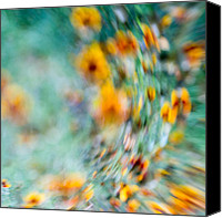 Sonic Canvas Prints - Sonic Canvas Print by Darryl Dalton
