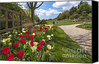 D700 Digital Art Canvas Prints - Spring Garden Canvas Print by Donald Davis