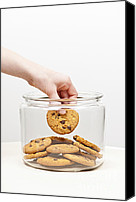 Comfort Canvas Prints - Stealing cookies from the cookie jar Canvas Print by Elena Elisseeva