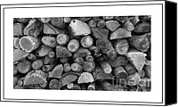 Black And White Photo Special Promotions - Stock Pile Seasoning Canvas Print by Sara  Raber