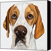 Droopy Canvas Prints - Super Model Droopy Dogz Canvas Print by Model Dogz