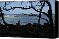 Brad Scott Canvas Prints - Surfers Resting Grounds Canvas Print by Brad Scott