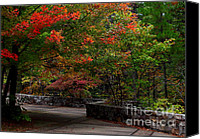 Lanscape Canvas Prints - Talimena Park Canvas Print by Robert Frederick