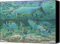 Grouper  Canvas Prints - Tarpon rolling Canvas Print by Carey Chen