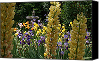Mick Anderson Canvas Prints - The Flower Garden and Bird Bath Canvas Print by Mick Anderson