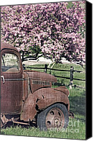 Fielding Canvas Prints - The Old Truck and the Crab Apple Canvas Print by Edward Fielding