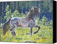 Melody Perez Canvas Prints - The Roan Canvas Print by Melody Perez