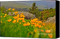 Andrzej Goszcz Canvas Prints - Those are moments that are incredibly joyful.  Canvas Print by Andrzej Goszcz