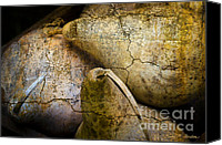 Chromatic Canvas Prints - Three Gourds Canvas Print by Dave Gordon