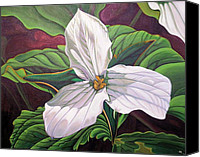 Leaves Special Promotions - Trillium Canvas Print by Wendy Russell