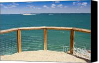 Tim Hester Canvas Prints - Tropical Lookout Canvas Print by Tim Hester