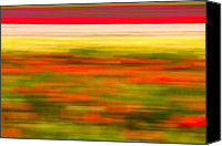 Matt Dobson Canvas Prints - Tulip Field Abstract Canvas Print by Matt Dobson