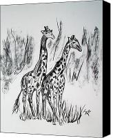 Bronze Drawings Canvas Prints - Two Giraffes Canvas Print by Janice Rae Pariza