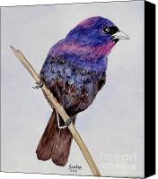 Bunting Painting Canvas Prints - Varied Bunting Canvas Print by Sandra Maddox