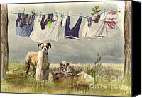 Boxer Canvas Prints - Wash Day Canvas Print by Trudi Simmonds