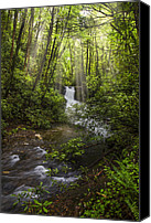 Mountain Photo Special Promotions - Waterfall in the Forest Canvas Print by Debra and Dave Vanderlaan