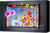 Interior Canvas Prints - Window of Fowers Canvas Print by Carlos Caetano