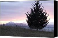 Kodiak Canvas Prints - Woody Island at Sunset Canvas Print by Penelope Cyr-Lorenson